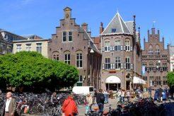 荷兰商科专业留学申请要求有哪些?