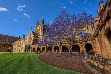 澳洲悉尼大学本科留学申请条件都有哪些?