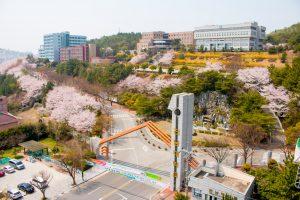 韩国留学一年需要花多少钱?
