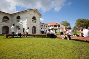 新西兰本科留学一年费用是多少钱?